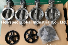 Double Eccentric Butterfly Valve Catalogue