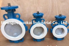 Wafer Butterfly Valve PFA Lined Directing Pad