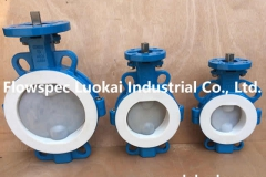Wafer Butterfly Valve PFA Lined