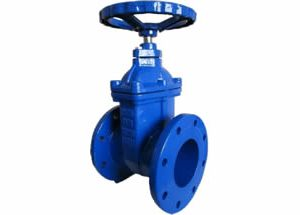 BS5150 BS5163 Resilient Gate Valve