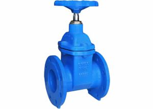 BS5150 Resilient Seated Gate Valve