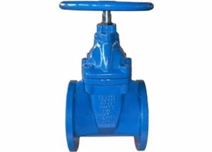 BS5163 Resilient Gate Valve